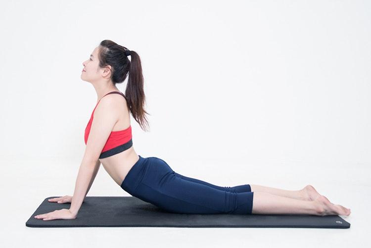 tư thế rắn hổ mang của yoga